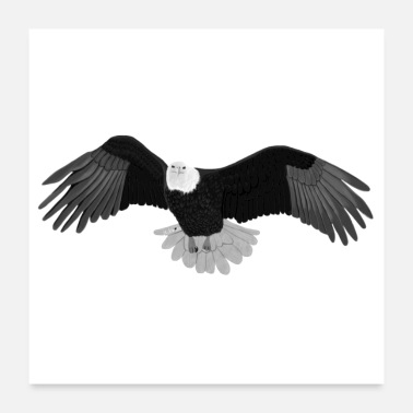 Schwarz jz.birds Adler Vogel Design Illustration - Poster