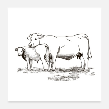 Sweet Cow Cow with calf - Poster