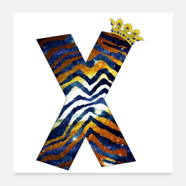 Diversity Letters design colorful X, symbol of diversity - Poster