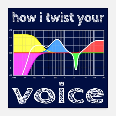 Sound Engineering how i twist your voice - hgr1 - Poster
