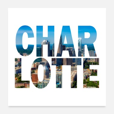Carolina Panthers Charlotte North Carolina Cityscape - Poster