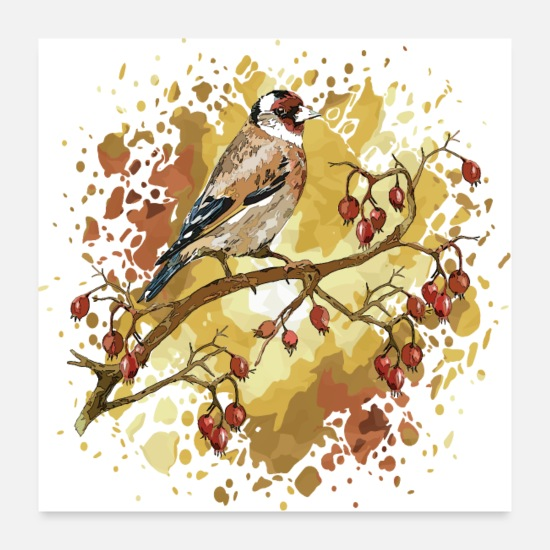 Symbol  Posters - Goldfinch bird - Posters white