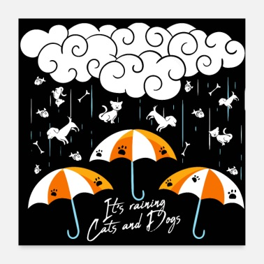 Expression It's raining cats and dogs - Poster