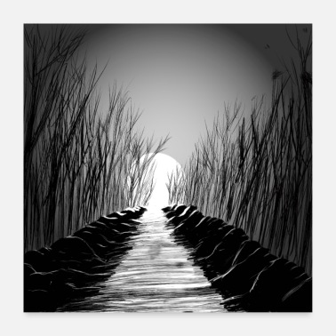 Black And White Collection Wald - Poster 60x60 cm