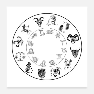 Astrology zodiac 12 signs poster astrology in negative - Poster