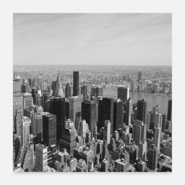 Nyc NYC from above black and white - Poster