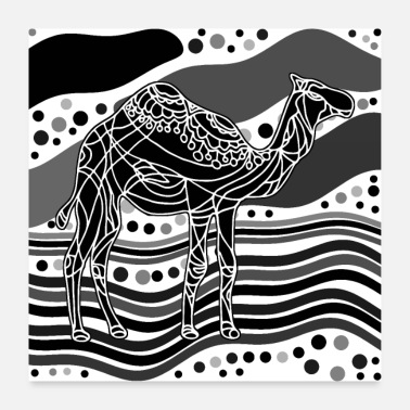 Nature Camel - Poster 24 x 24 (60x60 cm)