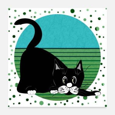 stor svart fitta katt