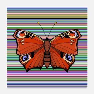 Nature Conservation Butterfly peacock eye - Poster