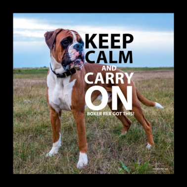 Poster KEEP CALM Boxer Rex Got This - Poster 24 x 24 (60x60 cm)