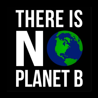 There Is No Planet B Poster (White Font Version) - Poster 24 x 24 (60x60 cm)