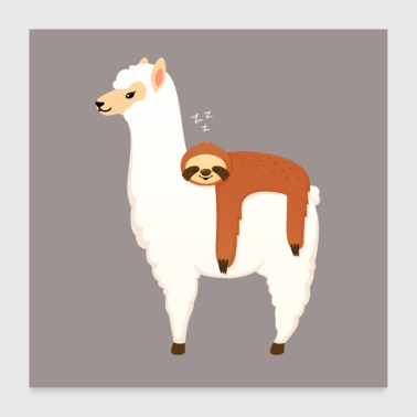 Sloth Sleeping On Llama - Poster 60x60 cm