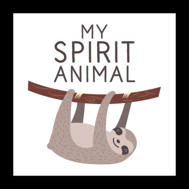My Spirit Animal is een luiaard - Poster 60x60 cm