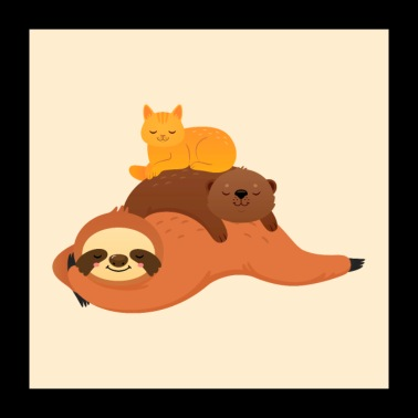 Sloth, otter, cat - Poster 60x60 cm