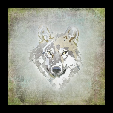 wolf - Poster 60x60 cm