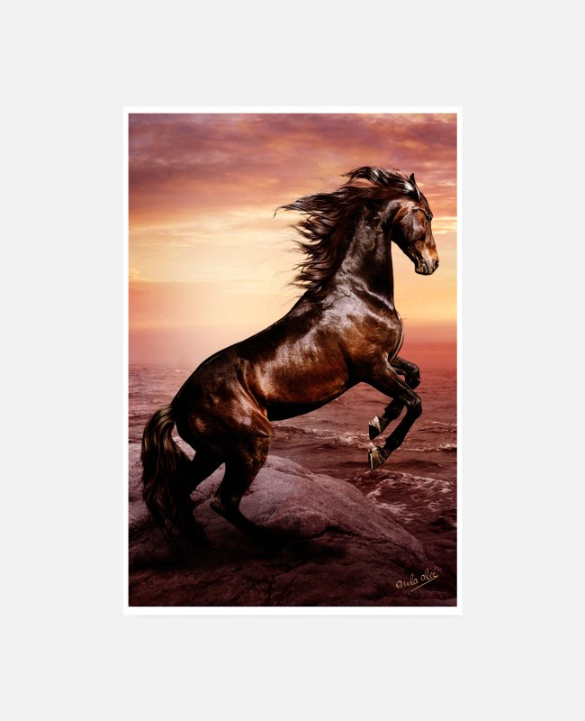 Sunset Posters - Wild horse, freedom and indomitable spirit - Posters white