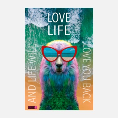 Laama 02 Lama LOVE LIFE Rakkaus Juliste Margarita Pop Art - Juliste 20x30 cm
