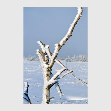Lonely tree in the frost Poster - Poster 20x30 cm