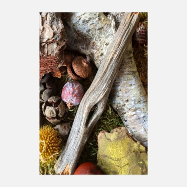 Decoration Forest floor decoration - Poster 8 x 12