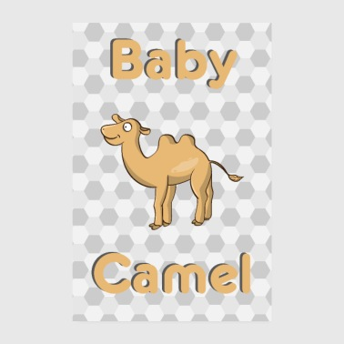 Baby Camel Camel Baby Animal - Poster 20x30 cm