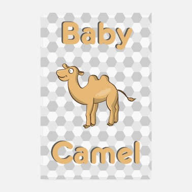 Baby Baby Camel Camel Baby Animal - Poster 20x30 cm