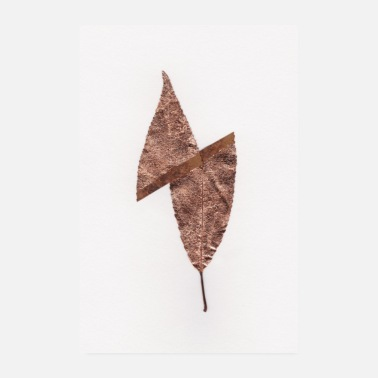 Leaf Copper leaf - Poster 8 x 12