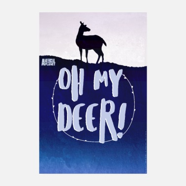 Offizielle Lizenz Animal Planet Oh My Deer! - Poster