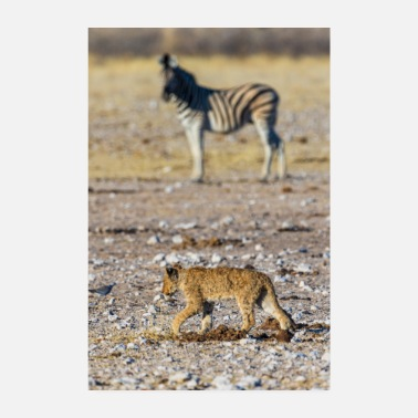 Mali Baby lion - Poster