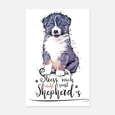 Aussie puppy - Do not stress me, otherwise shepherd's - Poster