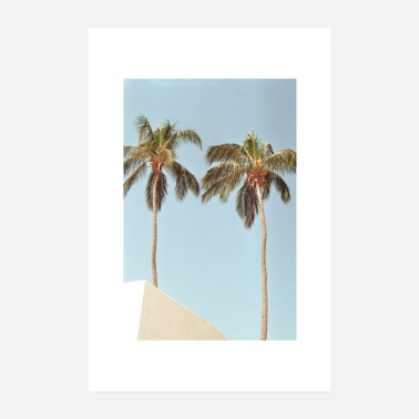 Analogue Analog photography palm house sky with border - Poster