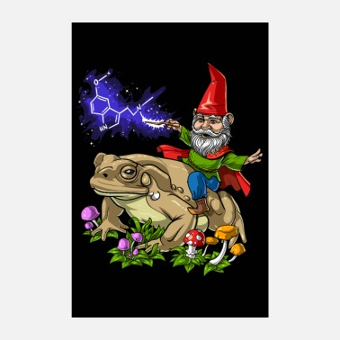 Trip Psychedelic Gnome DMT Trip - Poster