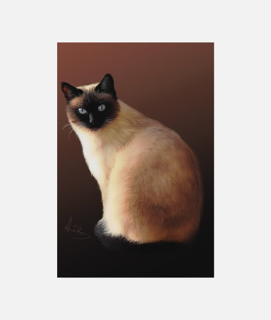 Artist Posters - Siamese cat drawing - Posters white