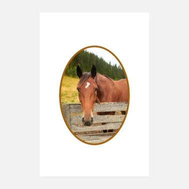Oval Horse portrait in an oval frame - Poster