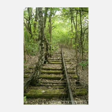 Strike Nature Strikes Back - Overgrowing tracks in the forest - Poster 8 x 12