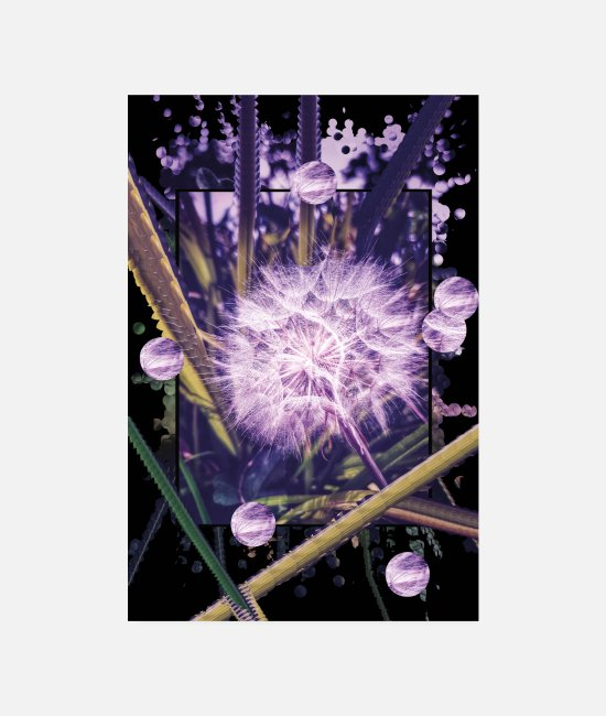 Nature Posters - Dandelion Abstract - Posters white