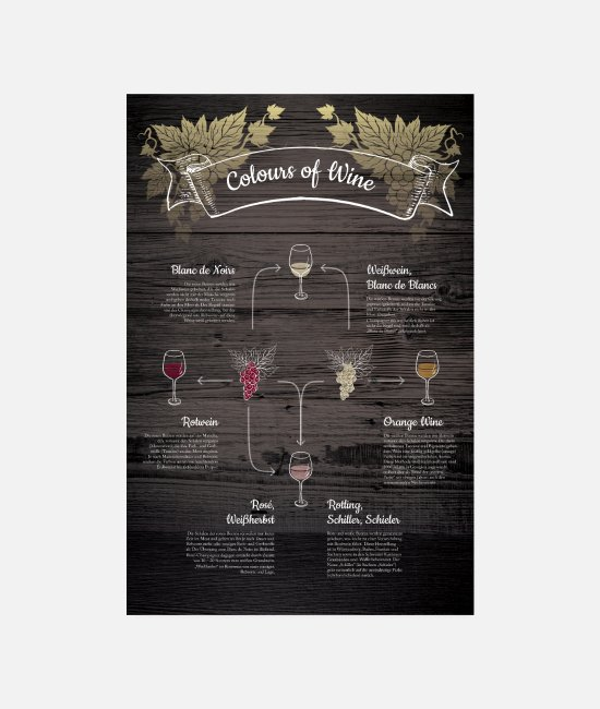 Illustration Poster - Colours of Wine - Wein-Wissen - Poster Weiß