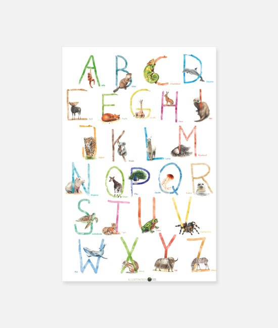 Alphabet Posters - ABC Poster Animals - Posters white