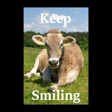 Keep Smiling - Cow - Poster 8 x 12