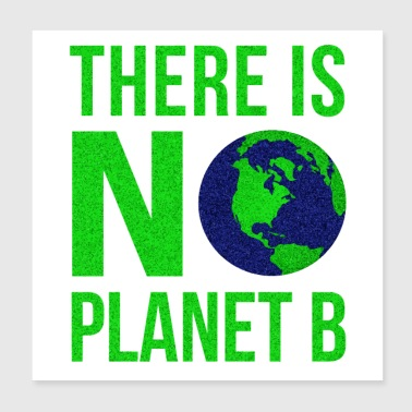 B Day There Is No Planet B - Earth Day - Poster 20x20 cm