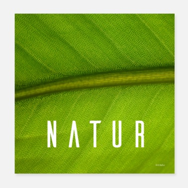 Nature Conservation The nature - Poster
