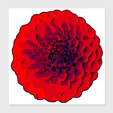 Dahlias rouges / Welikeflowers - Poster 20 x 20 cm