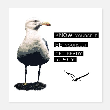 Philosophy The philosophy of life of the seagull - Poster 20x20 cm