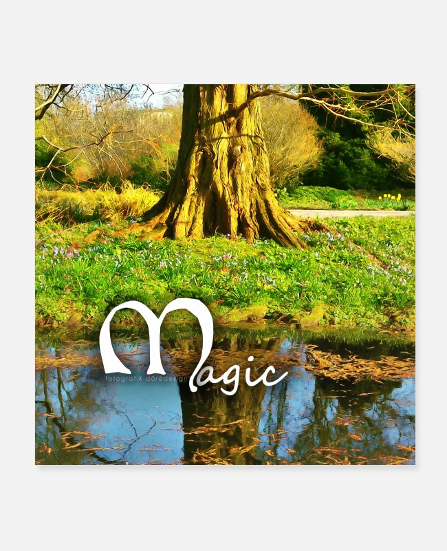 2018 Posters - Tree on the water Magic 2018 04 08 025 - Posters white