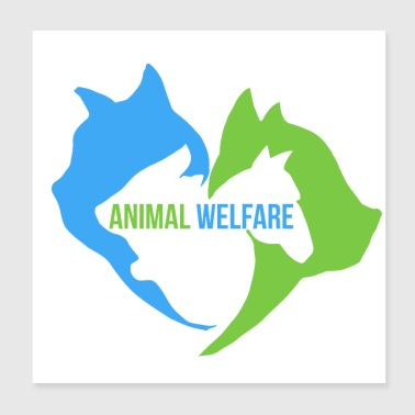 Animal Welfare Cat Dog Horse Rabbit - Poster 20x20 cm