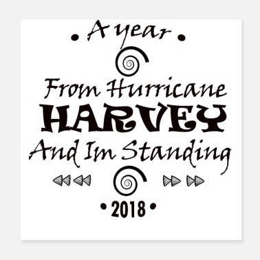 Texas harvey - Poster