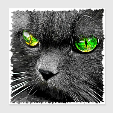gxp persian cat great eyes evil eye vector - Poster 20x20 cm