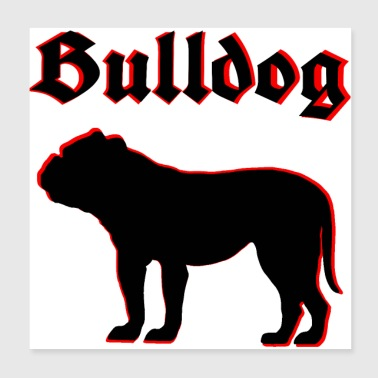 Bulldog, Bulldog, Bulldog, dog head, dog love - Poster 20x20 cm