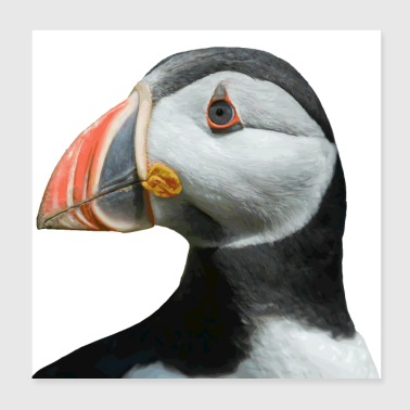 Adult PUFFIN - Poster 20x20 cm