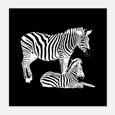 Mare Safari - Zebra mare with foal in black and white - Poster