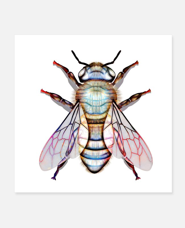 Nature Posters - A Delicate Bee - Posters white